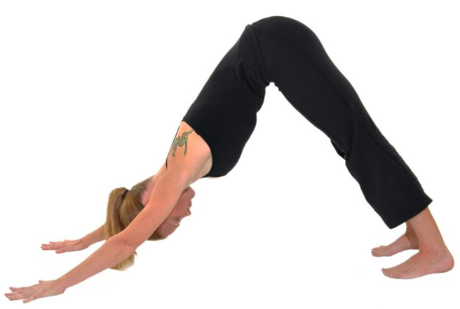 postura perro yoga