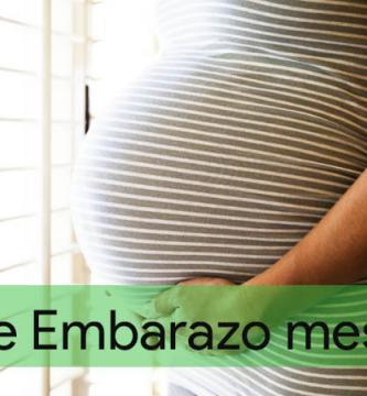 guia-de-embarazo-mes-a-mes-infoembarazada