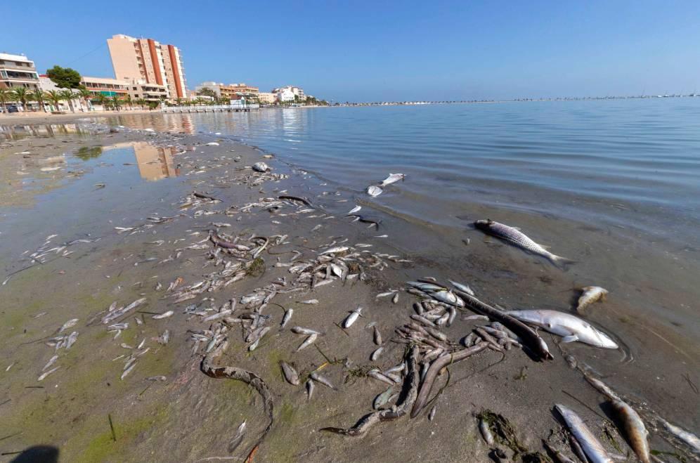 Vox propone medidas catastróficas para el Mar Menor