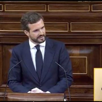"""Pablo Casado sobre Sánchez: """"Va como pollo sin cabeza"""""""
