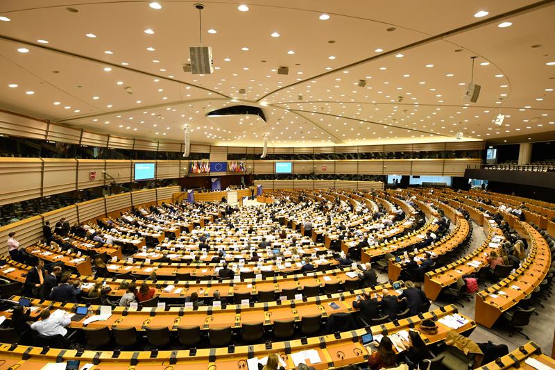 La Comunidad resalta en el Comité Europeo la buena respuesta del sector ganadero y agrario
