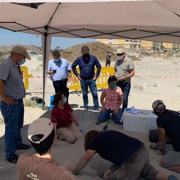 La tortuga boba pone 100 huevos con éxito en la playa de La Manga
