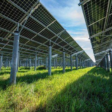 Murcia contará con la mayor planta fotovoltaica de autoconsumo del mundo