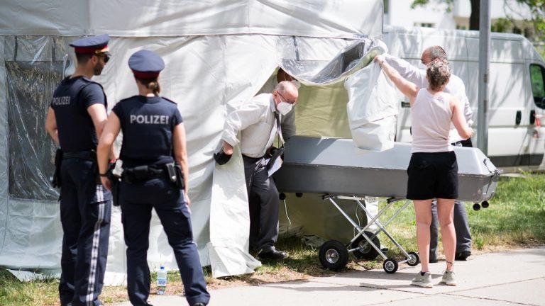 Asesinan a niña de 13 años y dejan su cuerpo junto a un árbol en Viena