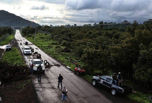 Productores de aguacate mexicanos crean un grupo armado contra los narcotraficantes