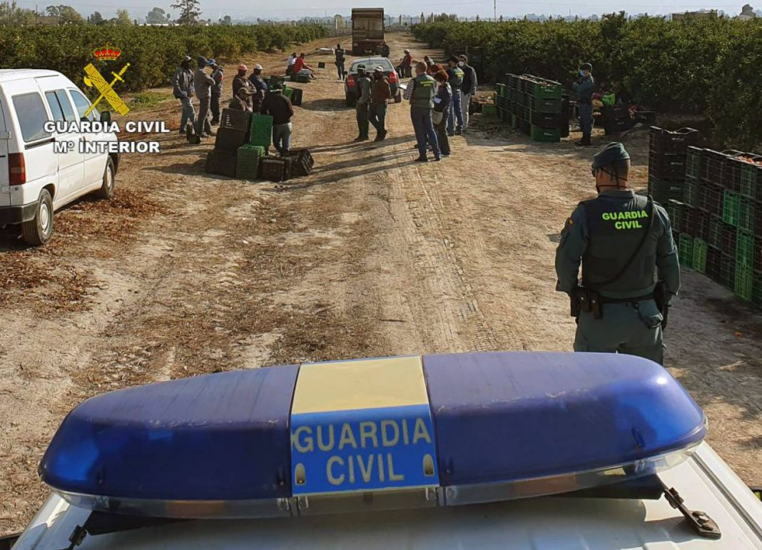 Agentes de la Guardia Civil durante una de las inspecciones en Bullas